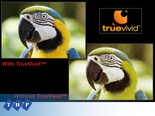 Máy chiếu Optoma W401 TrueVivid