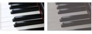 pianokeyscontrast_white