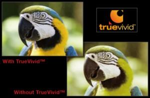 truevivid_b