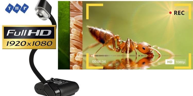 chất lượng hình ảnh mượt mà máy chiếu vật thể avervision F50-8m